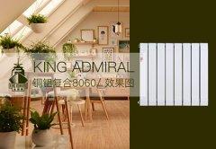 铜铝暖气片十大品牌:墙面暖气片选购与