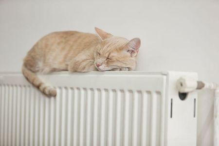 暖气片品牌